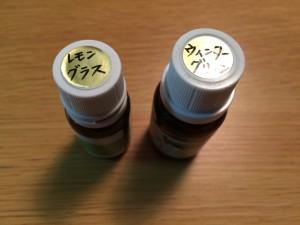 IMG_7029.JPG